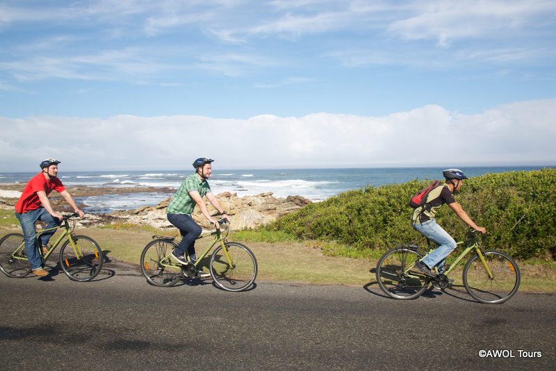 Cycling at Cape of Good Hope Nature Reserve with AWOL Tours