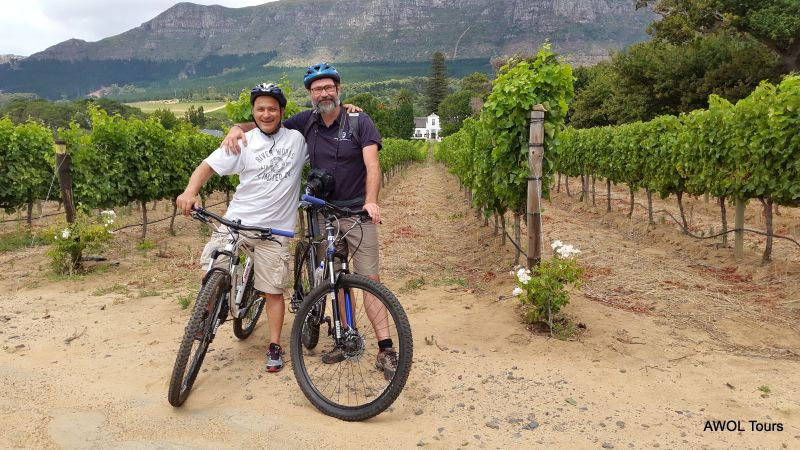 2015-01-03 cycling contantia winelands tours buitenverwachting