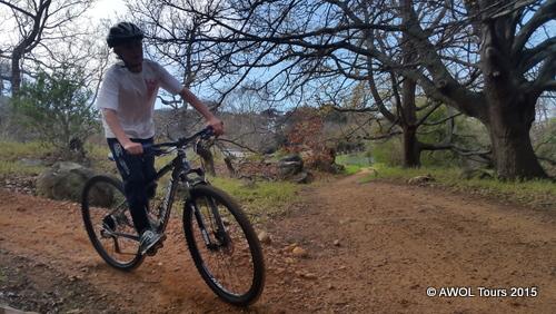 2015-08-17 Cape Town Table Mountain hiking and biking crawford (30)