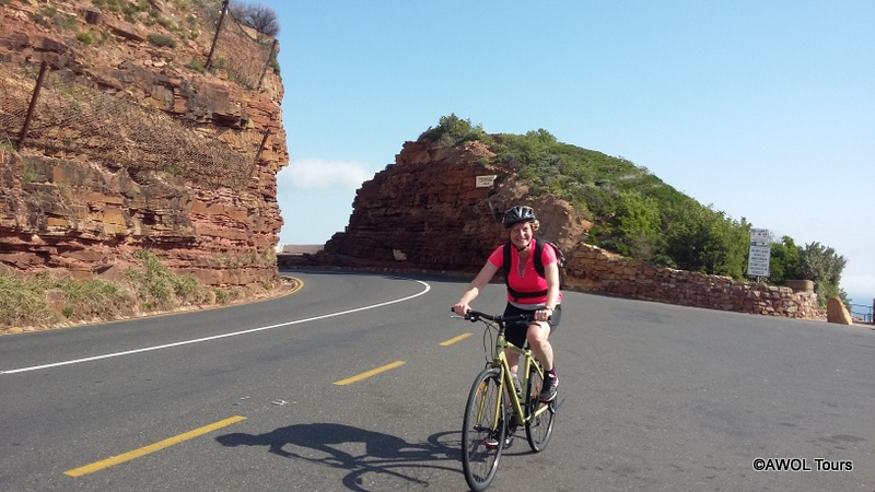 Chapman's Peak mountain pass