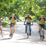 AWOL winelands cycling (1)