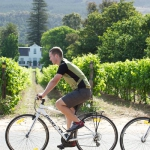 AWOL winelands cycling (4)