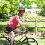 AWOL winelands cycling tour