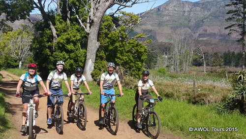 Constantia Winelands cycling tour