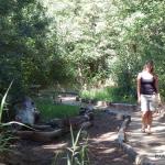 Doolhof River Walk