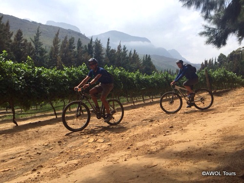 Wellington Winelands cycling