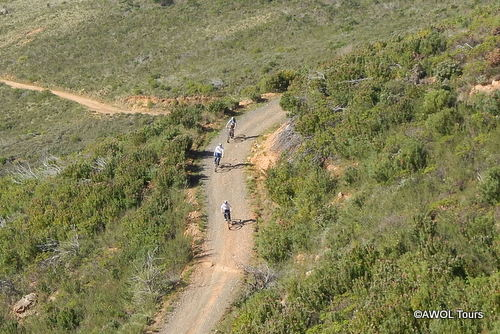 Table Mountain hiking and biking tour Cape Town (1)