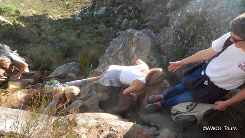 Table Mountain hiking and biking tour Cape Town (20)