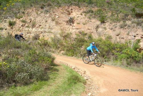 Table Mountain hiking and biking tour Cape Town (6)