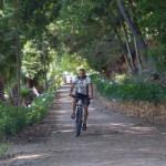 AWOL Wellington Doolhof cycle