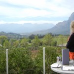 Winelands  (2)