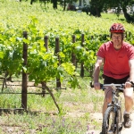 Winelands cycling (4)-001