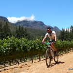 Winelands cycling Wellington