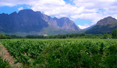 Winelands-hiking