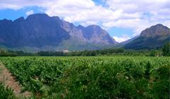 Winelands-hiking