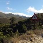 garden route cycling tours klein karoo 1
