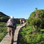 hiking the hoerikwaggo1