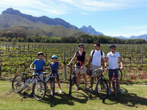 stellenbosch cycling tour